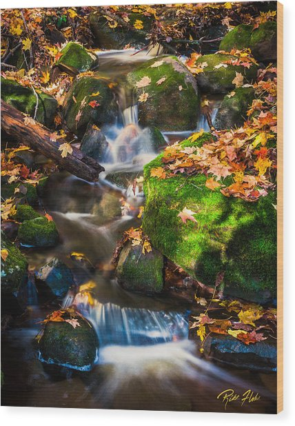 Fall Seasonal Water Cascade Wood Print