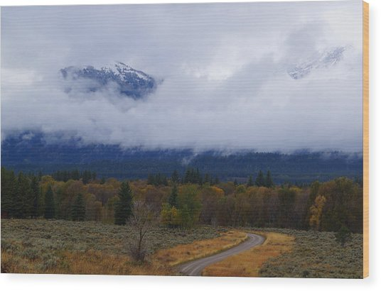 Fall Season's Last Stand Wood Print