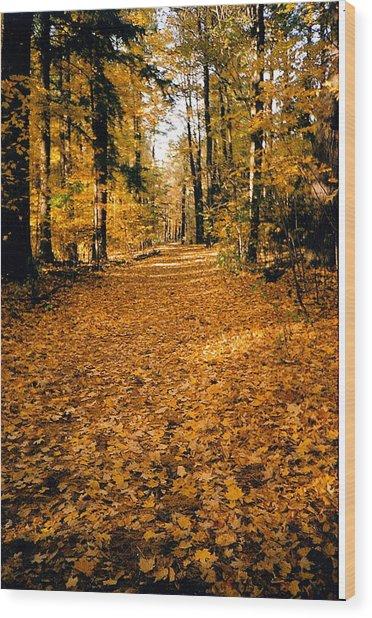 Fall Wood Print by Stephanie Moore