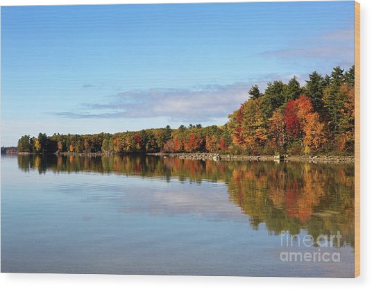 Fall Tree Reflections Lake Sabago Maine Wood Print