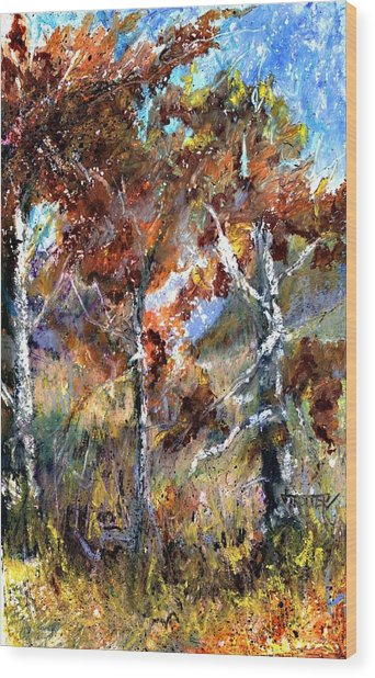 Fall Trees Wood Print by Jimmie Trotter