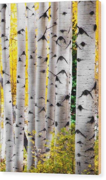 Fall Trunk Show  Wood Print