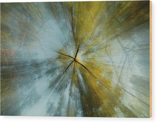 Fall U P  Wood Print