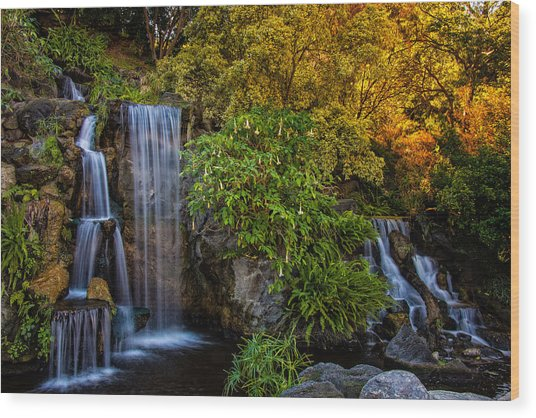 Wood Print featuring the photograph Fall Water Fall by Harry Spitz