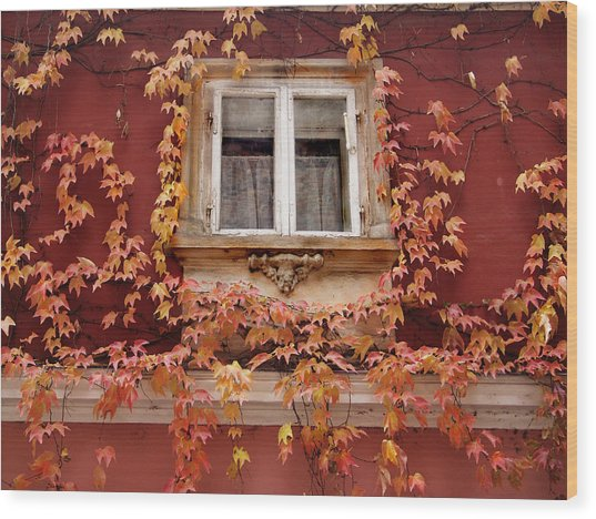 Fall Window,prague Wood Print