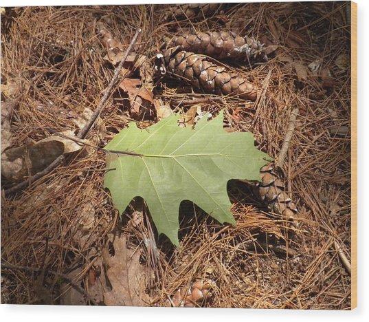 Fallen Leaf Wood Print by Karen Moulder
