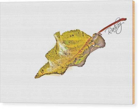 Fallen Leaf Wood Print by Rahat Iram