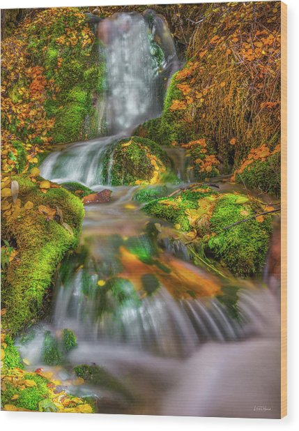 Fallert Creek Autumn Wood Print by Leland D Howard
