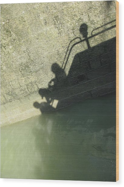 Wood Print featuring the photograph Falling Into The Water by Menega Sabidussi