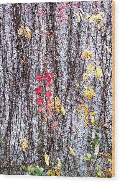 Falling Into Winter Wood Print