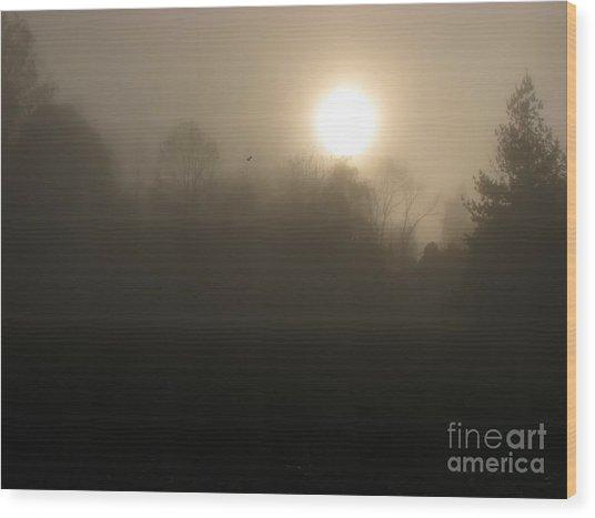 Falling Leaf In Morning Fog Wood Print