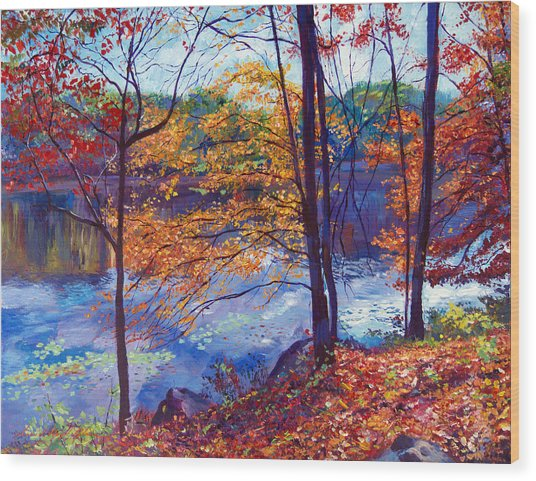 Falling Leaves Wood Print by David Lloyd Glover