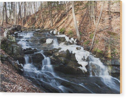 Falling Waters In February #1 Wood Print