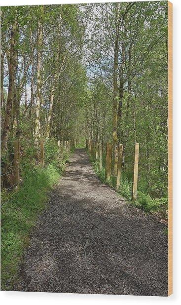 Falloch Path Wood Print