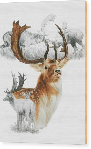 Wood Print featuring the mixed media Fallow Deer by Barbara Keith