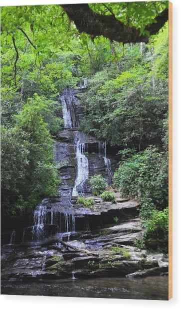 Falls Near Bryson City Wood Print