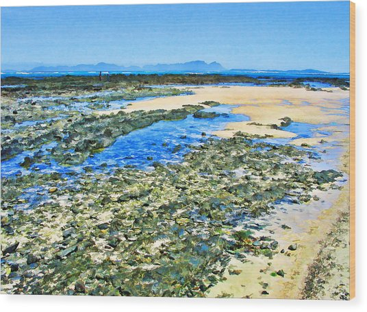 False Bay Low Tide Wood Print by Jan Hattingh