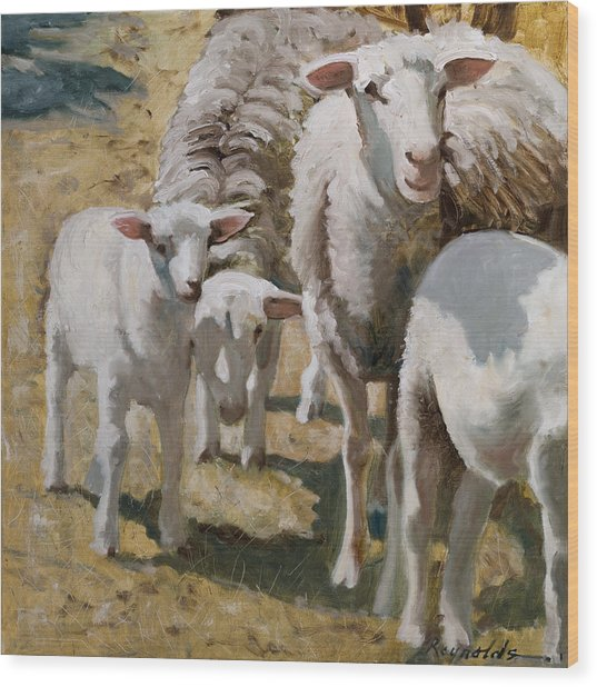 Family Of Sheep Wood Print
