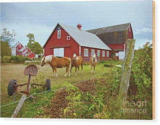 Family On The Farm Wood Print
