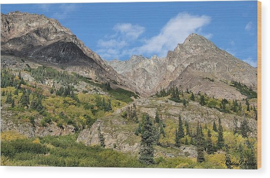 Famous White Pass Summit Wood Print by Dennis Stein