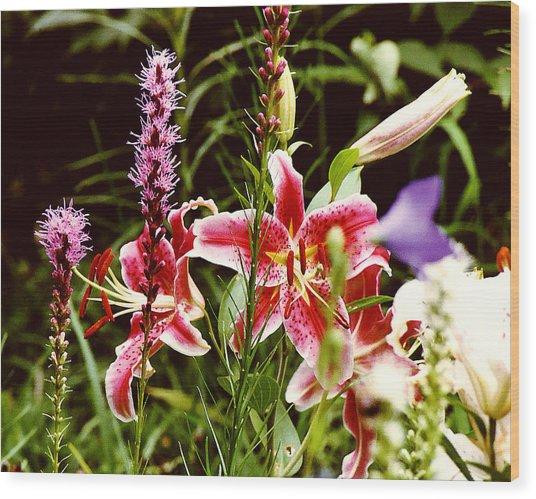 Fancy Lilies In Garden Wood Print