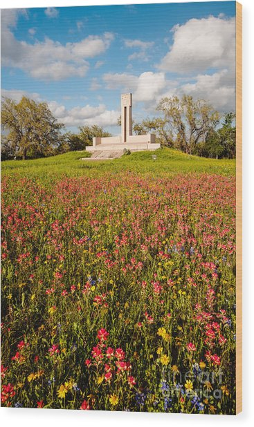 Fannin Monument And Memorial With Wildflowers In Goliad - Coastal Bend South Texas Wood Print
