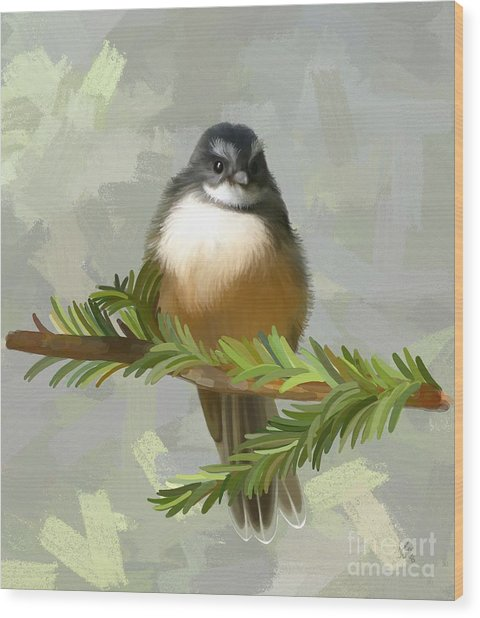 Wood Print featuring the painting Fantail  by Ivana Westin