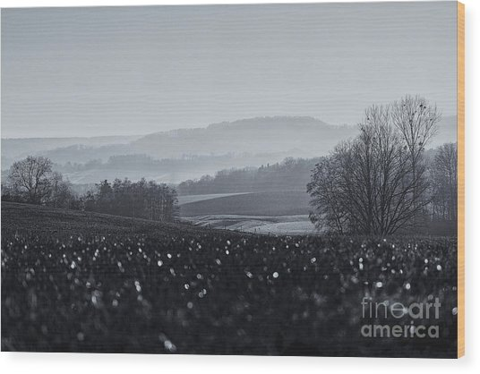 Far Away, The Misty Mountains Cold Wood Print