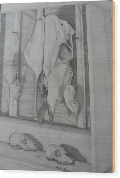 Farm Boxed Skeletons Wood Print by Matthew Handy