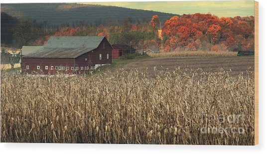 Farm Fall Colors Wood Print