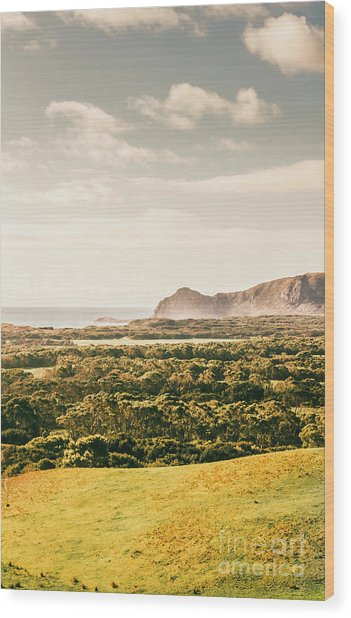 Farm Fields To Seaside Shores Wood Print