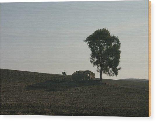 Farm House Alone. Wood Print by Dennis Curry