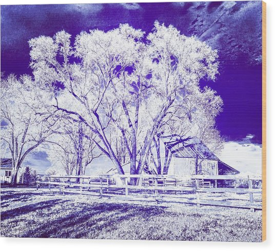 Farm In Suburbia With Wildcat Flare Wood Print