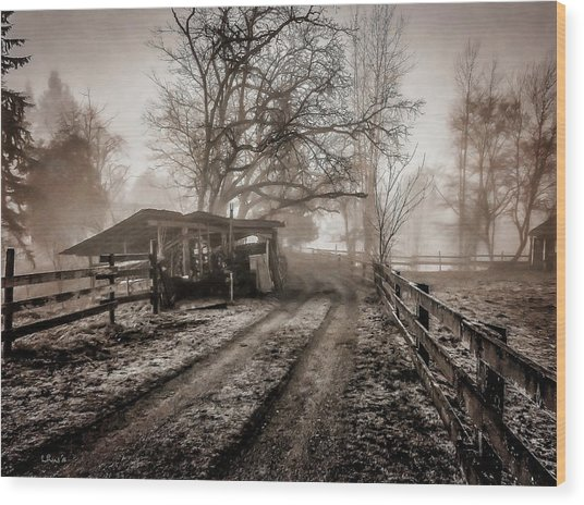 Farm Road Late Autumnl. Wood Print