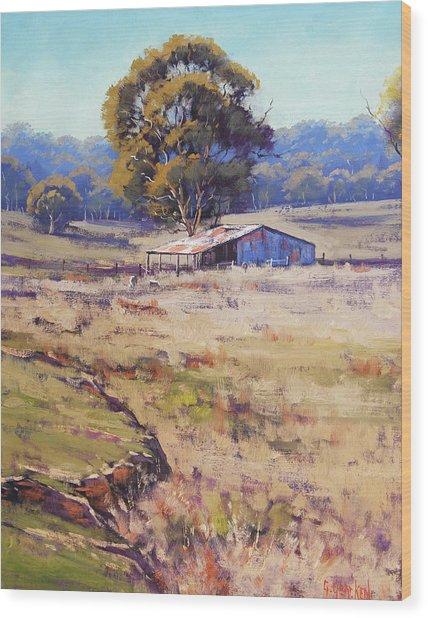 Farm Shed Pyramul Wood Print