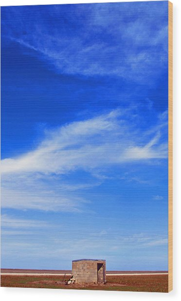 Farm Shed Under Texas Sky 1 Wood Print by James Granberry