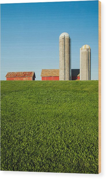 Farm Silos And Shed On Green And Against Blue Wood Print