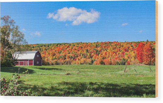 Farm View From Russellville Road Wood Print