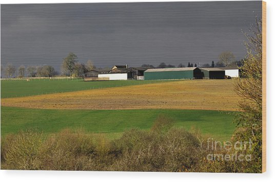 Wood Print featuring the photograph Farm View by Jeremy Hayden
