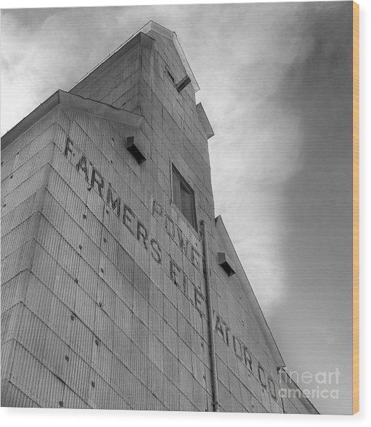 Farmers Grain Elevator, Power, Montana Bw Wood Print