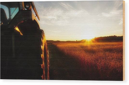 Farming Until Sunset Wood Print