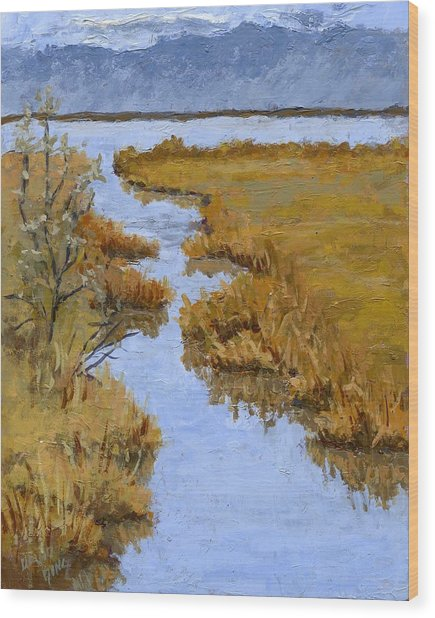 Farmington Bay Marsh Wood Print