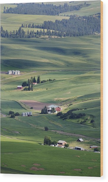 Farmland In Eastern Washington State Wood Print