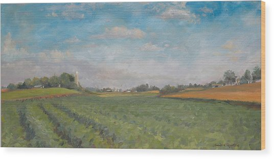 Farms And Fields Wood Print by Sandra Quintus
