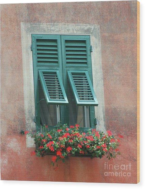 Faux  Painting Window  Wood Print