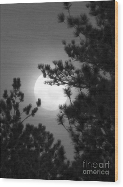 Favorite Full Moon Wood Print