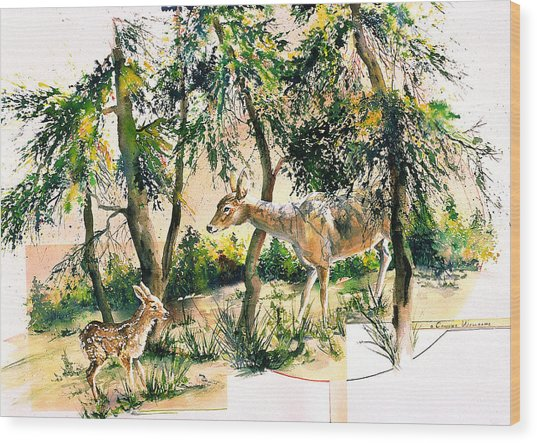 Fawn And Doe Wood Print