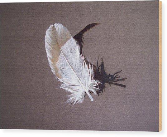 Feather And Shadow 1 Wood Print by Elena Kolotusha