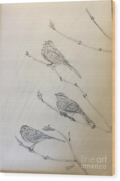 Feathers Friends Wood Print