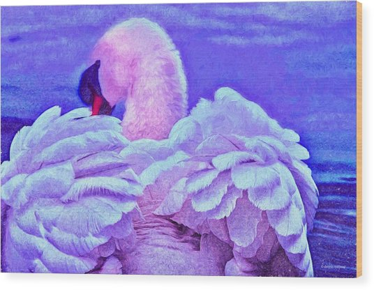 Feathers Of Royalty Wood Print